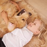 Ringworms and how to treat them in dogs